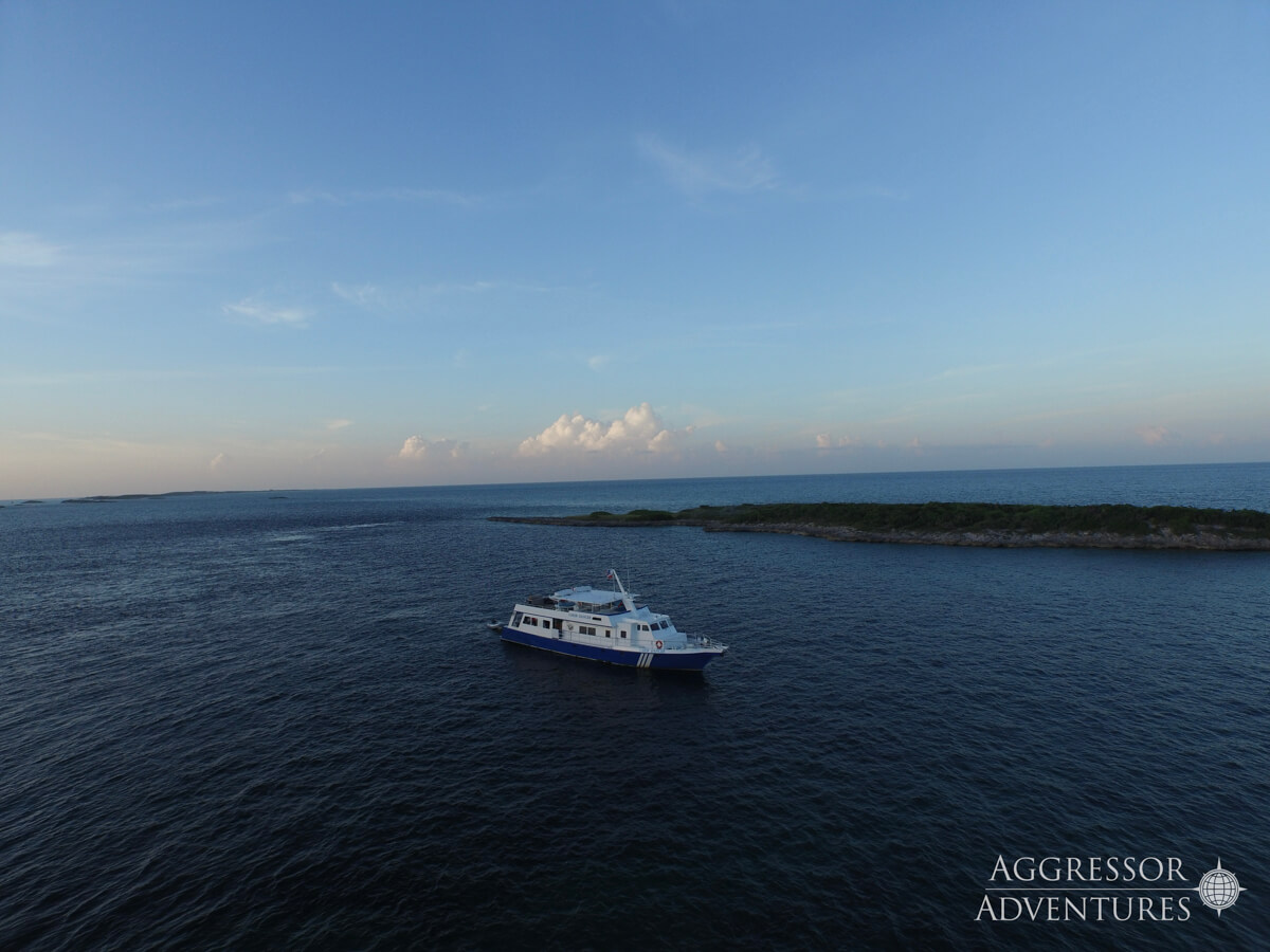 tropical-seas_schiffe_bahamas-aggressor-0-7
