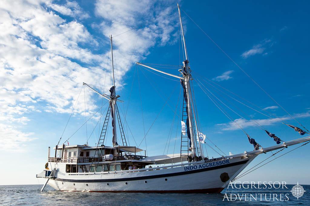 tropical-seas_schiffe_indo-aggressor-1-2