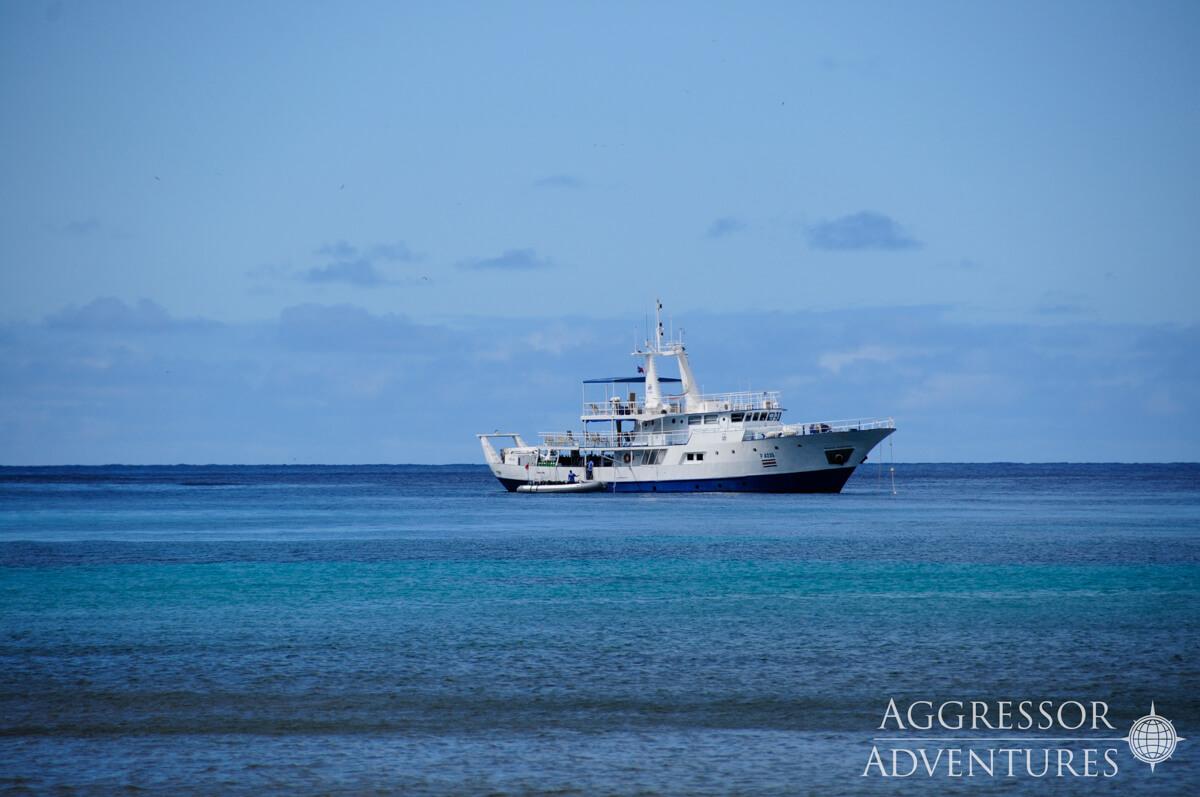 tropical-seas_schiffe_okeanos-aggressor-1-0-09